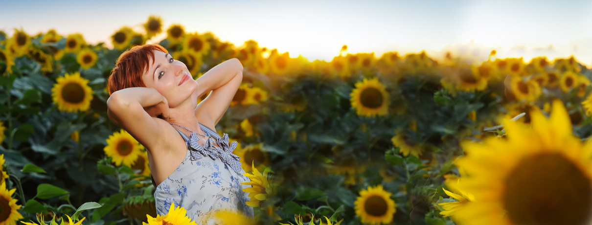 Frühjahrskollektion Sonnenblumen