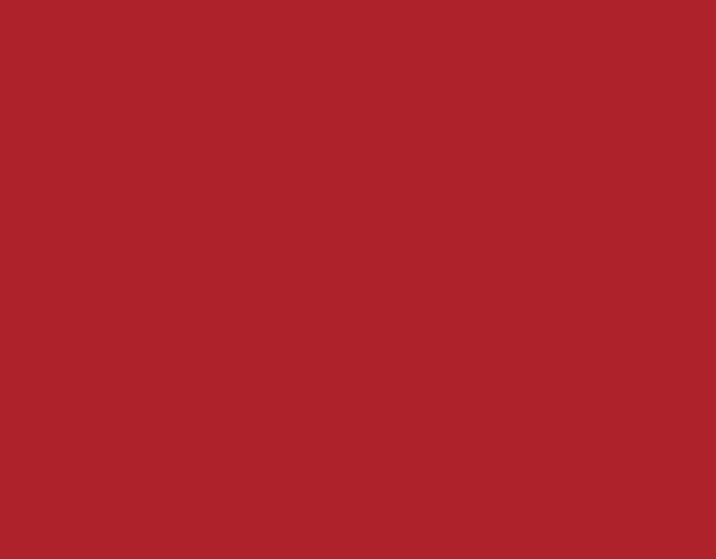 Bindungsstretch rot