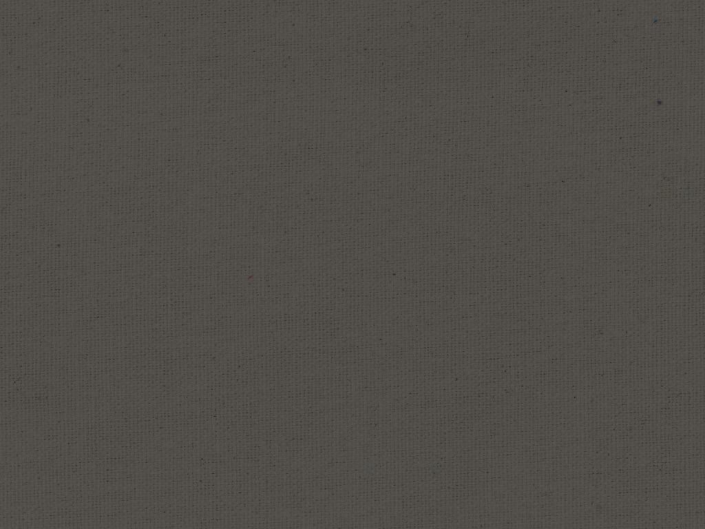 BW Canvas Grau