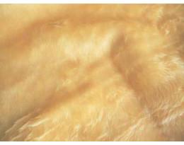 Plüsch beige