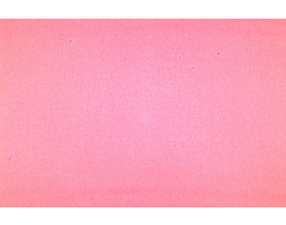 Satin rosa