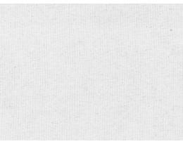 BW Canvas Weiß
