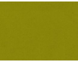 BW Canvas Apfelgrün