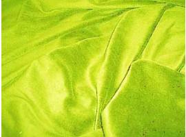 Nicki apfelgrün